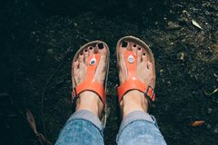 Woman`s feet in orange sandals and jeans standing by the water royalty free stock photography