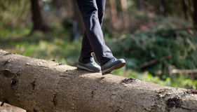 Woman`s feet in sneakers walking on log in the forest Stock Photography
