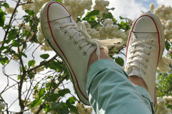 Woman's feet in white sneakers against the lilac blossom and blue sky Royalty Free Stock Image