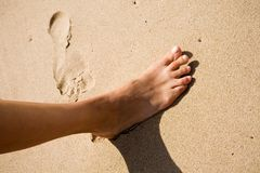 Woman's food on the sand a. T sunny day Stock Image