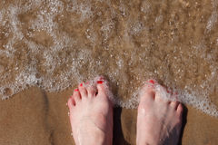 Woman's foot in beach sand Stock Image