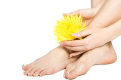 Woman's foot and hand. With flowers isolate on white Stock Photos