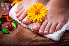 Woman's french manicure and pedicure. Beautiful female feet and hands Stock Images