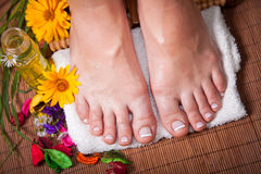 Woman's french manicure and pedicure. Beautiful female feet and hands Royalty Free Stock Photo