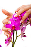 Woman's french manicure and pedicure. Beautiful female feet and hands Royalty Free Stock Photography