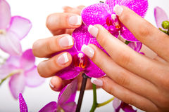 Woman's french manicure and pedicure. Beautiful female feet and hands Stock Photo