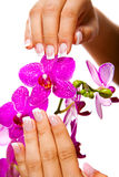 Woman's french manicure and pedicure. Beautiful female feet and hands Stock Photography