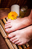 Woman's french manicure and pedicure. Beautiful female feet and hands Royalty Free Stock Photos