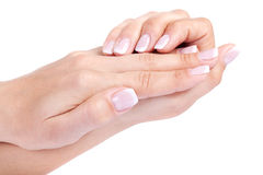 Woman's french manicure Royalty Free Stock Photography