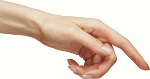 Woman`s hand. Stock Image