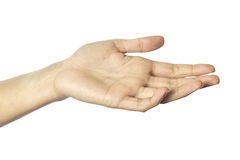 Woman's hand Stock Image
