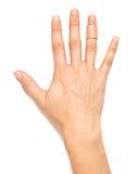 Woman's Hand Stock Photo