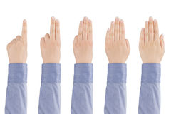 Woman's hand counts from one to five. Royalty Free Stock Images