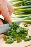 Woman's hand cutting green onion Royalty Free Stock Images