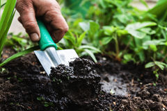A woman's hand digs soil and soil with a shovel. Close-up, Conce Royalty Free Stock Photos