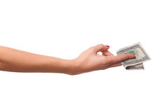 Woman's hand and dollars. Stock Image