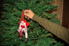 Woman`s hand fixing up some Christmas Decorations among the bran. Ches of a Christmas Tree on Blur Background royalty free stock photo