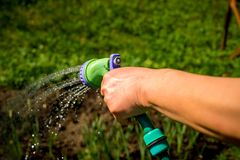Senior Woman`s hand with garden hose watering plants, gardening concept.watering flowers, close-up, water splashes stock images