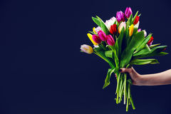 Woman's hand gives a bouquet of tulips Stock Photography