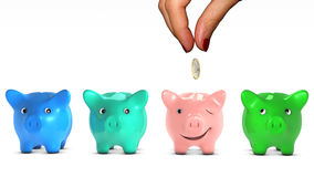 Woman's hand giving giving a coin to a piggy bank. Woman's hand choosing a piggy bank and giving it a piece of money. The selected piggy bank is happy. Concept Stock Photos
