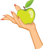 Woman's hand holding apple . illustration Stock Photo