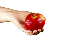 Woman's hand holding an apple. Woman's hand holding a ripe red apple Royalty Free Stock Photo
