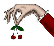 Woman`s hand holding cherries in her fingers. Retro design element. Vintage engraving stylized drawing. There is in addition a vector format EPS 8 Stock Photo