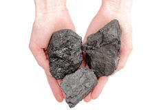 Woman's hand holding coal lumps on white background. Woman's hand with coal lumps on white background Royalty Free Stock Images