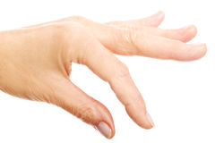 Woman's hand holding copy space. Close up. Stock Photography