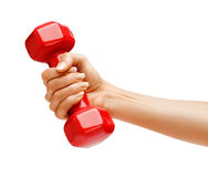 Woman's hand holding dumbbell isolated on white background. Stock Images