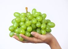 Woman's hand holding fresh grapes Stock Photo