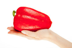 Woman's hand holding fresh pepper Royalty Free Stock Photography