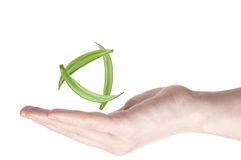 Woman's hand holding green leaf Royalty Free Stock Photography