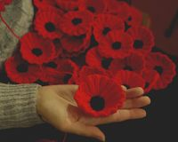 Woman`s Hand holding Knitted Poppy for Charity Royalty Free Stock Photography