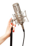 Woman's hand holding microphone stand Stock Image