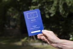 Woman's hand holding Pet Passport Stock Photos