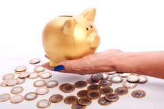 Woman's hand holding piggy bank and coins of the Brazilian money Royalty Free Stock Images