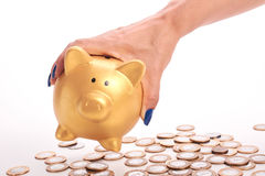 Woman's hand holding piggy bank and coins of the Brazilian money Royalty Free Stock Image