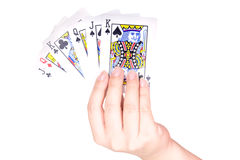 Woman's hand holding playing cards. On white background Stock Images