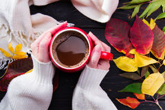 Woman`s hand holding a red cup of coffee above dark wooden table. Autumn leaves, white scarf royalty free stock photo
