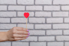 Woman`s hand holding red heart shape on stick. White brick wall baskground. Valentine concept. Royalty Free Stock Photo