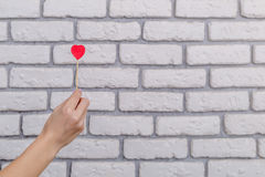 Woman`s hand holding red heart shape on stick. White brick wall baskground. Valentine concept. Royalty Free Stock Photography