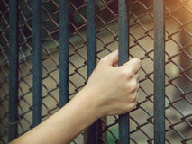 Woman's hand holding a Steel custody. Stock Photography