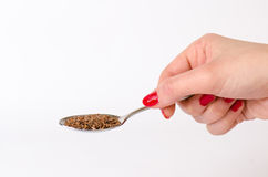 Woman´s hand keep a spoon with seed. White background. Isolated. Macro. Agriculture. Woman´s hand keep a spoon with seed. White background. Isolated royalty free stock image