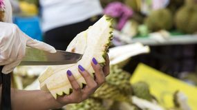 Woman & x27;s hand with knife on durian friut. At fruit stock photography