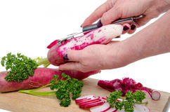 Woman's hand peeling a red radish. Isolated on white Stock Photography