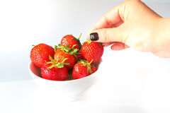 Woman's hand picking up a fresh strawberry Stock Image