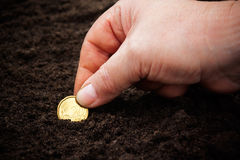 Woman's hand planting coin in soil. Selective focus Stock Images