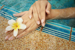 Woman's hand with plumeria flower at swimming pool. Royalty Free Stock Photos
