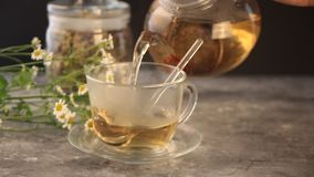 Woman`s hand pouring into a glass cup herbal medical flowers camomile tea. Naturopathy. Matricaria chamomilla. Woman`s hand pouring into a glass cup herbal stock footage